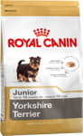 Yorkshire Terrier Puppy (Йоркширский терьер щенок)